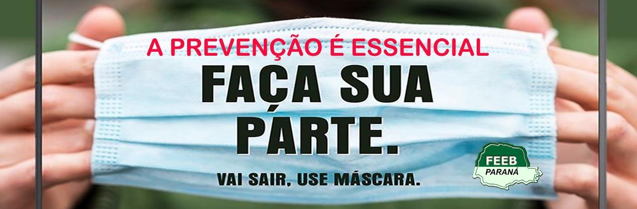Use Mascara