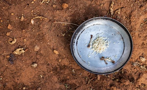 Fome no Brasil volta a subir e atinge mais de 10 milhões de brasileiros, diz IBGE